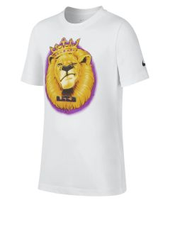 Remera Nike Dri-Fit Lebron Kids