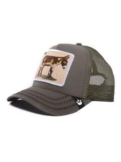 Gorra Goorin Bros Baseball Donkey Ass